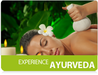 Ayurveda authentic experience in Kerala, India: Ayurvedic treatments in exclusive boutique Resort